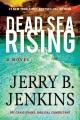 Dead Sea rising : a novel