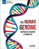 The human genome : mapping the blueprint of human life