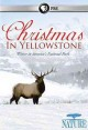 Christmas in Yellowstone : winter in America's National Park