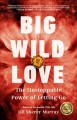 Big wild love : the unstoppable power of letting go
