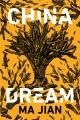China dream : a novel