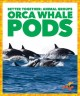 Orca whale pods