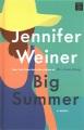 Big summer [large print]