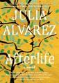 Afterlife : a novel