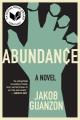 Abundance : a novel