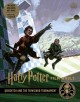 QUIDDITCH AND THE TRIWIZARD TOURNAMENT.