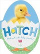 Hatch : peek and see the baby animals.