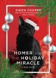 Homer and the holiday miracle : a true story