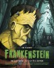Frankenstein : the illustrated just-for-kids edition