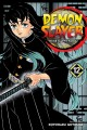 Demon slayer = Kimetsu no yaiba. Volume 12, The upper ranks gather
