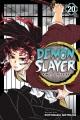 Demon slayer = Kimetsu no yaiba. 20, The path of opening a steadfast heart
