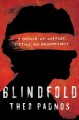 Blindfold : a memoir of capture, torture, and enlightenment