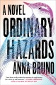 ORDINARY HAZARDS : A NOVEL
