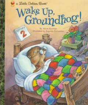 Wake up, groundhog! cover image