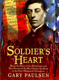 Soldier's heart : a novel of the Civil War cover image