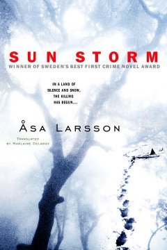 Sun storm cover image