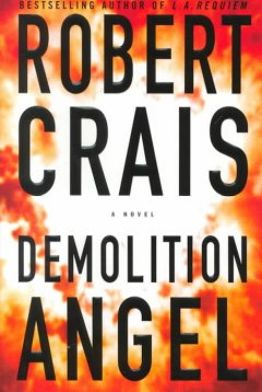 Demolition angel cover image