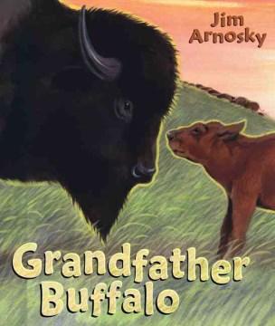 Grandfather Buffalo cover image