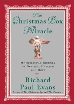 The Christmas box miracle : my spiritual journey of destiny, healing, and hope cover image