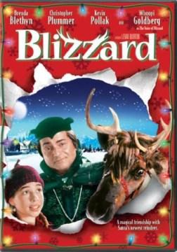 Blizzard cover image