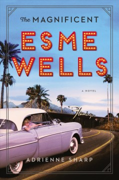 Magnificent Esme Wells : a novel cover image