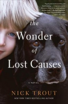 The wonder of lost causes cover image