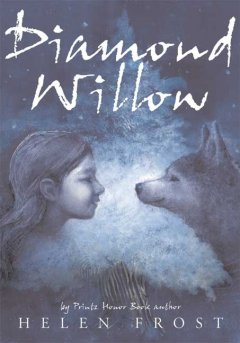 Diamond Willow cover image