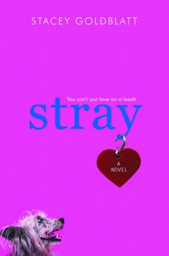 Stray cover image