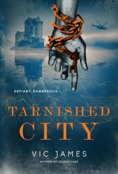 Tarnished city cover image