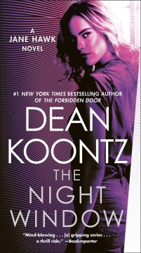 The night window a Jane Hawk novel cover image