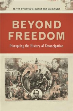 Beyond freedom : disrupting the history of emancipation cover image