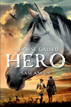 A horse called Hero cover image