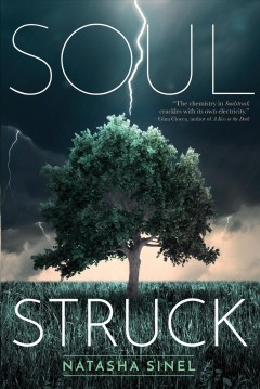 Soulstruck cover image
