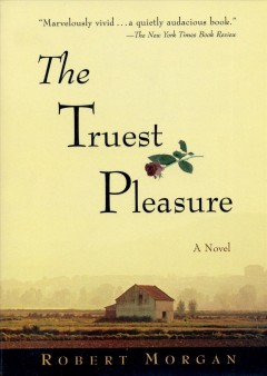The truest pleasure : a novel cover image