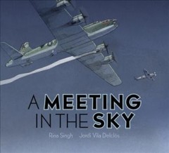 A meeting in the sky cover image
