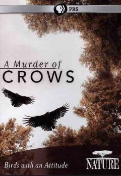 A murder of crows birds with an attitude cover image