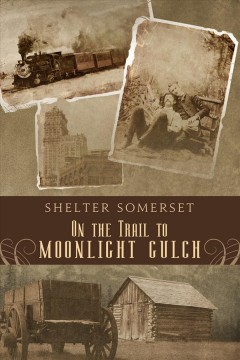 On the trail to moonlight gulch cover image