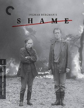 Shame cover image
