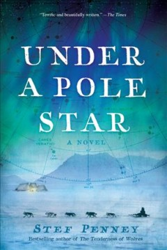 Under a pole star cover image