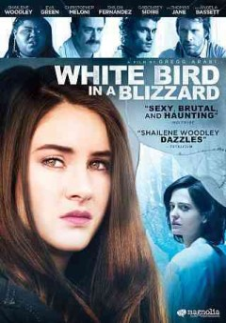 White bird in a blizzard cover image