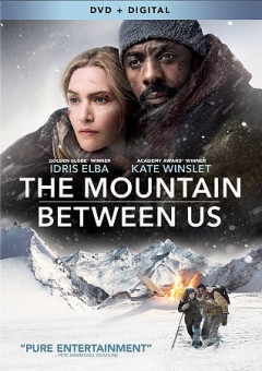 The mountain between us cover image