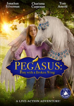 Pegasus pony with a broken wing cover image