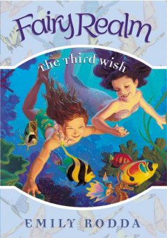 The third wish cover image