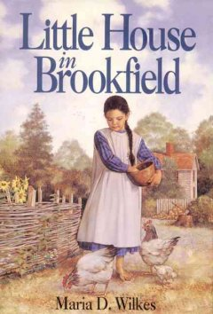 Little house in Brookfield cover image