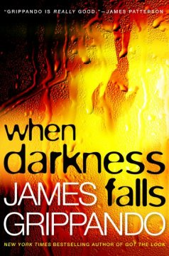 When darkness falls cover image