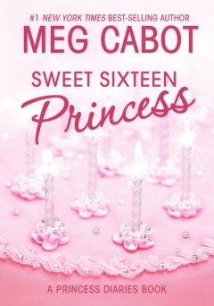 Sweet sixteen princess cover image
