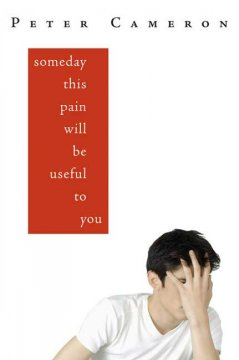 Someday this pain will be useful to you cover image