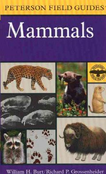 A field guide to the mammals : North America north of Mexico cover image