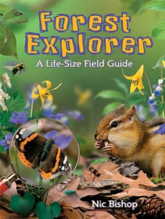 Forest explorer : a life-size field guide cover image