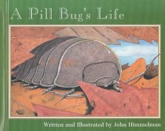 A pill bug's life cover image